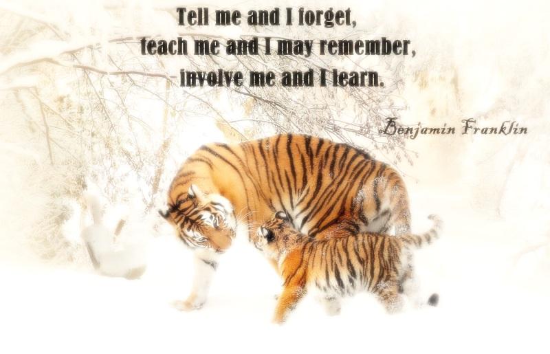 teach_me